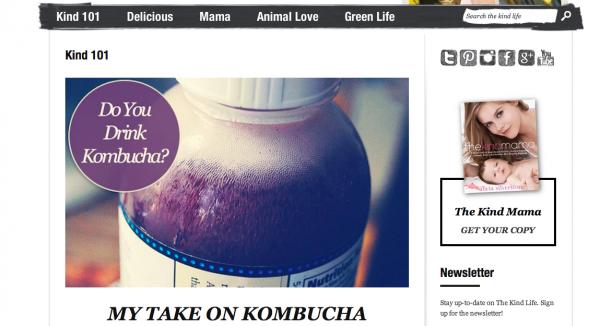 kombucha blog