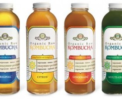 kombucha-bottled