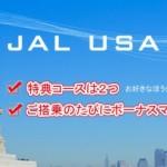 JAL USAカードをアメリカ駐在員が使うと異常にマイルがたまります