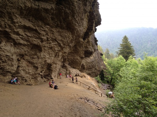 アメリカ駐在員のグレートスモーキーマウンテン大自然探索その②Alum CaveとClingmans Dome