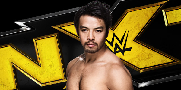 wwecom-2015-06-hideo_returns_to_nxt