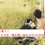 【日本と大違い】アメリカで犬・猫を飼う3つの方法