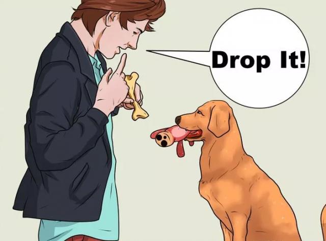 drop-it